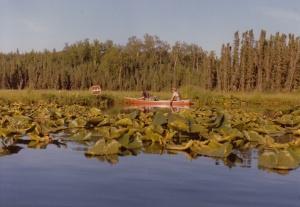 Canoe_Kenai_0002